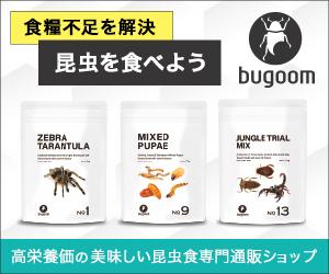 センスが光る人間が食べれる昆虫!美味しい昆虫食専門通販【bugoom(バグーム)】