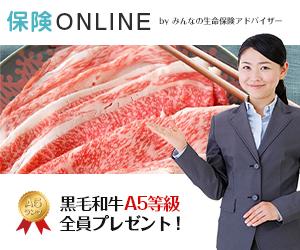 【保険ONLINE】自宅でプロに相談できる!無料のオンライン保険相談に左右されないためには?