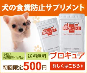 酵素とプロバイオティクスのペット(犬・猫)用サプリメント【プロキュア】を出し続ける理由
